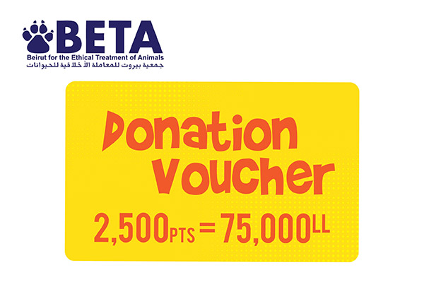BETA Beirut for the Ethical Treatment of Animals points donation worth 75,000 L.L